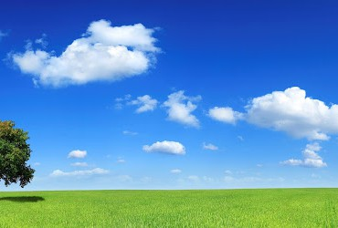 tree-field-clouds-horizon